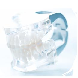 お一人おひとりの口腔内にぴったり合った入れ歯を作ります